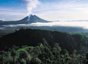 Экскурсионные туры в Индонезию из Тольятти